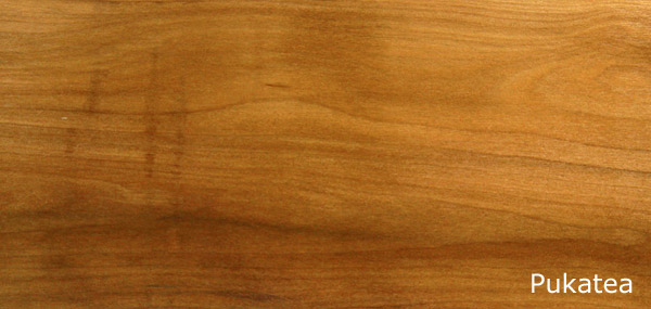 Pukatea Wood